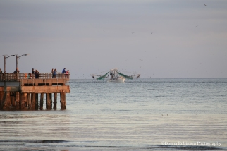 Shrimp Boat Coming in for the day - The Pier at SSI