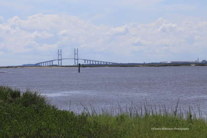 Sidney Lanier Bridge, Golden Isles Georgia Settings: AV f/29, TV 1/250 sec.; ISO 500; Focal length 170mm