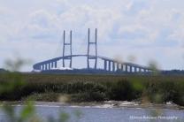Sidney Lanier Bridge, Golden Isles Georgia Settings: AV f/20; TV 1/500sec; ISO 500, Focal400mm