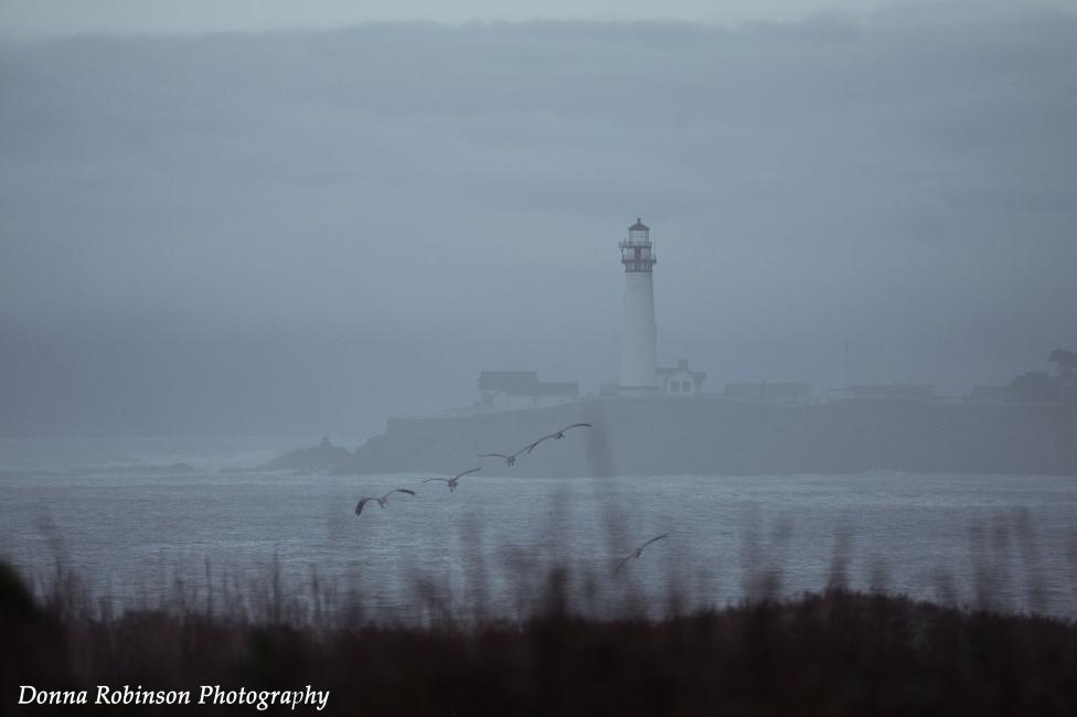 """""""Pigeons Point Lighthouse"""" Settings: TV 1/3200 se; AV f/5.6; ISO 400; Exp. 0; Focal Length 360mm"""