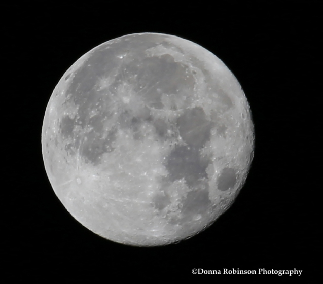 img_6254-january-2017-full-moon-011317-copyright