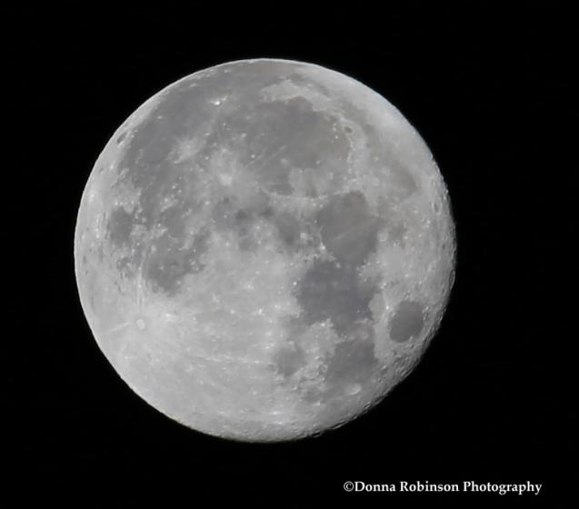 img_6254-january-2017-full-moon-011317-copyright
