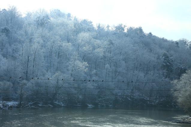 IMG_3866 120917 Atlanta Snow copyright