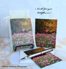 IMG_7648 090518 North Georgia Wildflowers copyright