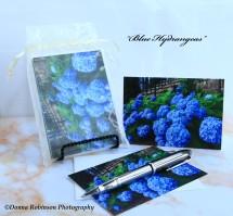 IMG_7659 090518 Blue Hydrangeas copyright