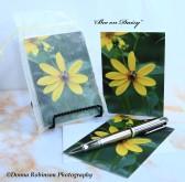 IMG_7660 090518 Bee On Daisy - copyright