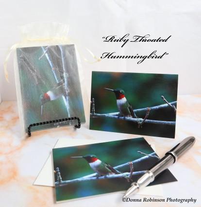 IMG_7816 090618 Ruby Throated Hummingbird - copyright
