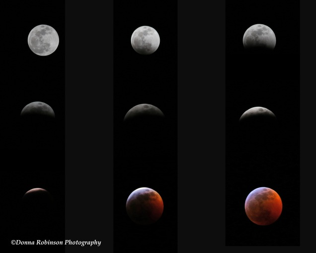 2019 lunar eclipse 012019 copyright